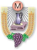 LSO - logo 01